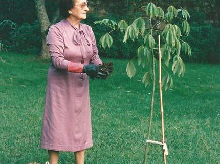 Maruxa plantando unha árbore